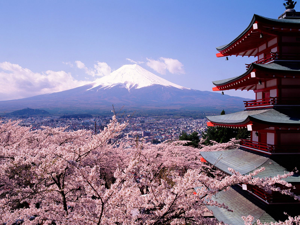 Sakura em Kyoto