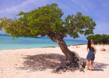 Aruba - fofoti